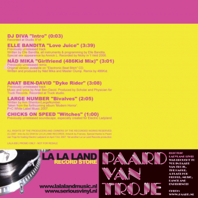 Electric Ladyland (back)